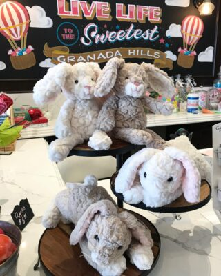 These are the softest plush bunnies EVER🐰🥰 Don't believe us? Stop on by and find out for yourself! They make a great addition to your Easter Baskets🍭 #LiveLifeToTheSweetest